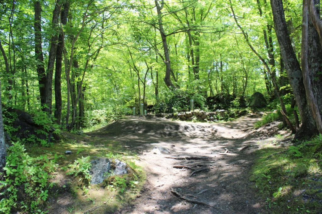 林の中で癒されるコテージライフ