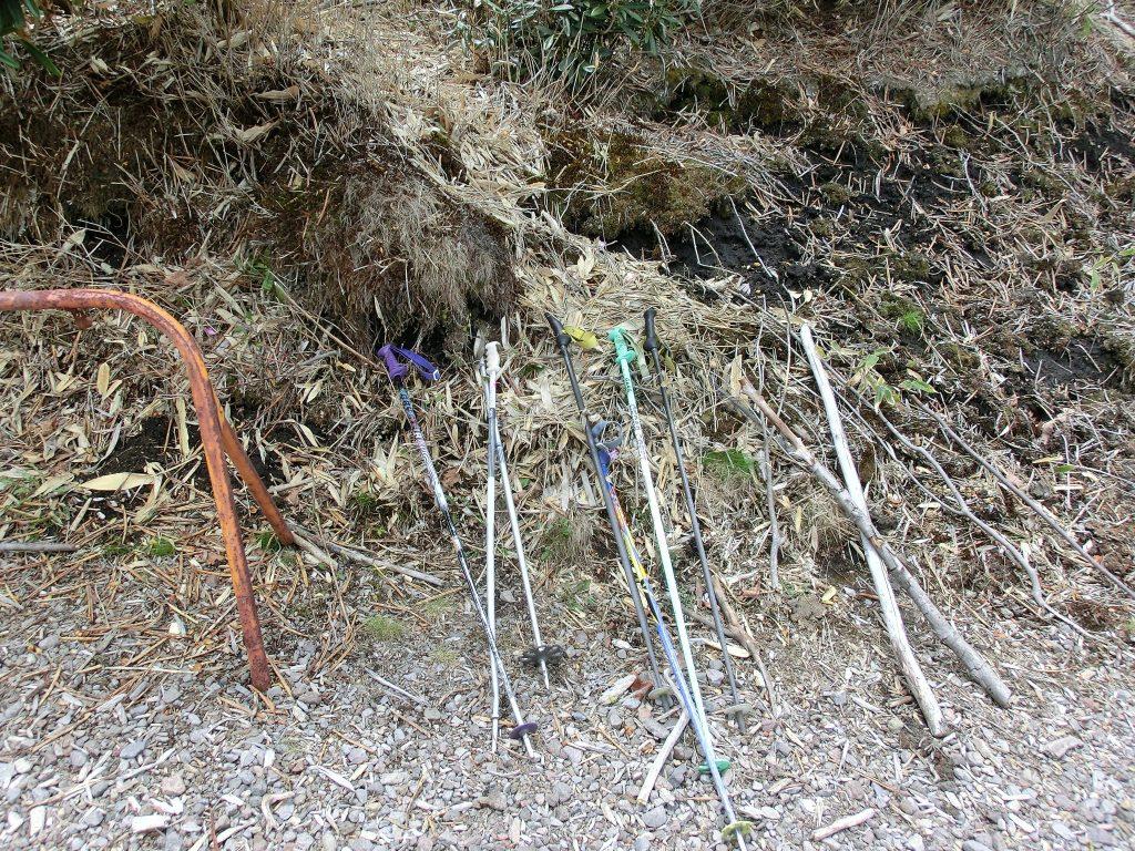 浅間高原のシャクナゲ園の無料貸し出し用のストック