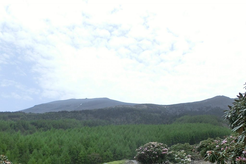浅間高原のシャクナゲ園は広大な嬬恋村が一望できる
