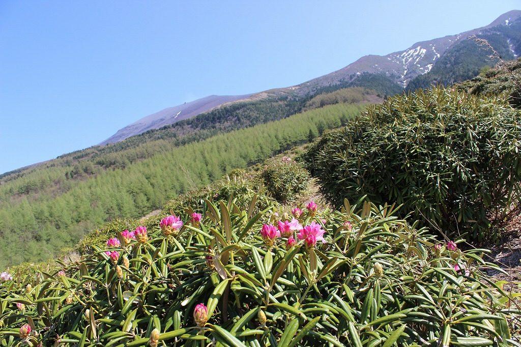 浅間山のフォトスポット