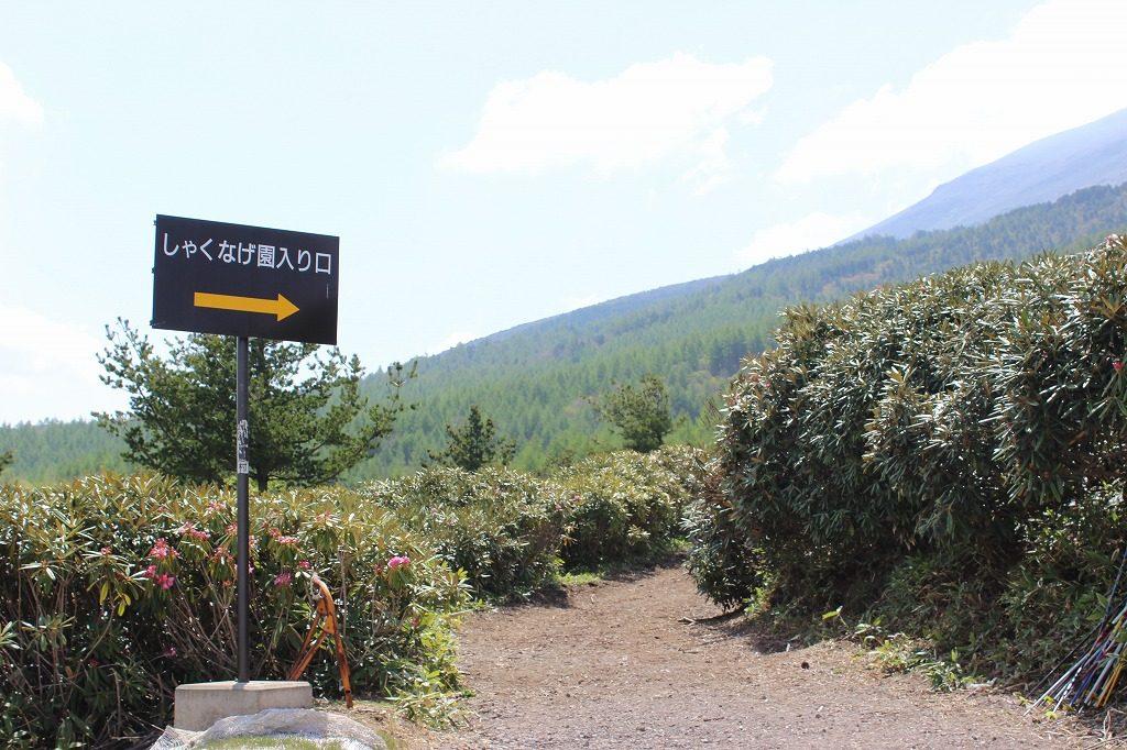 嬬恋村浅間高原シャクナゲ園入口