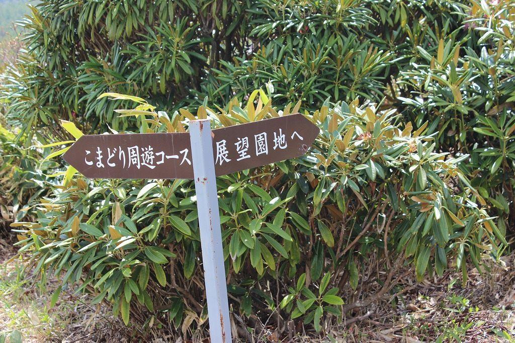 浅間高原シャクナゲ園のの案内板