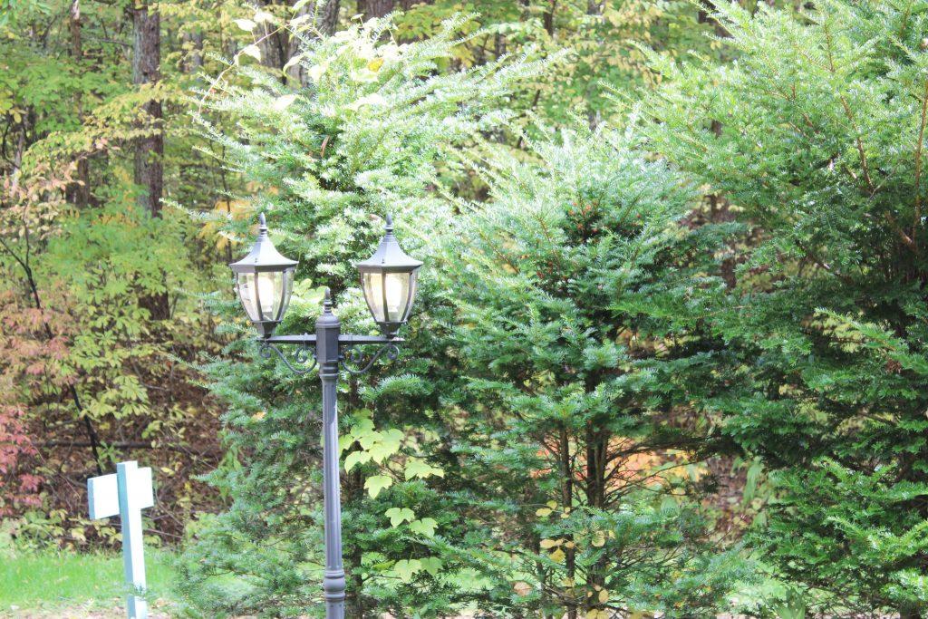 オーロラの庭の外灯