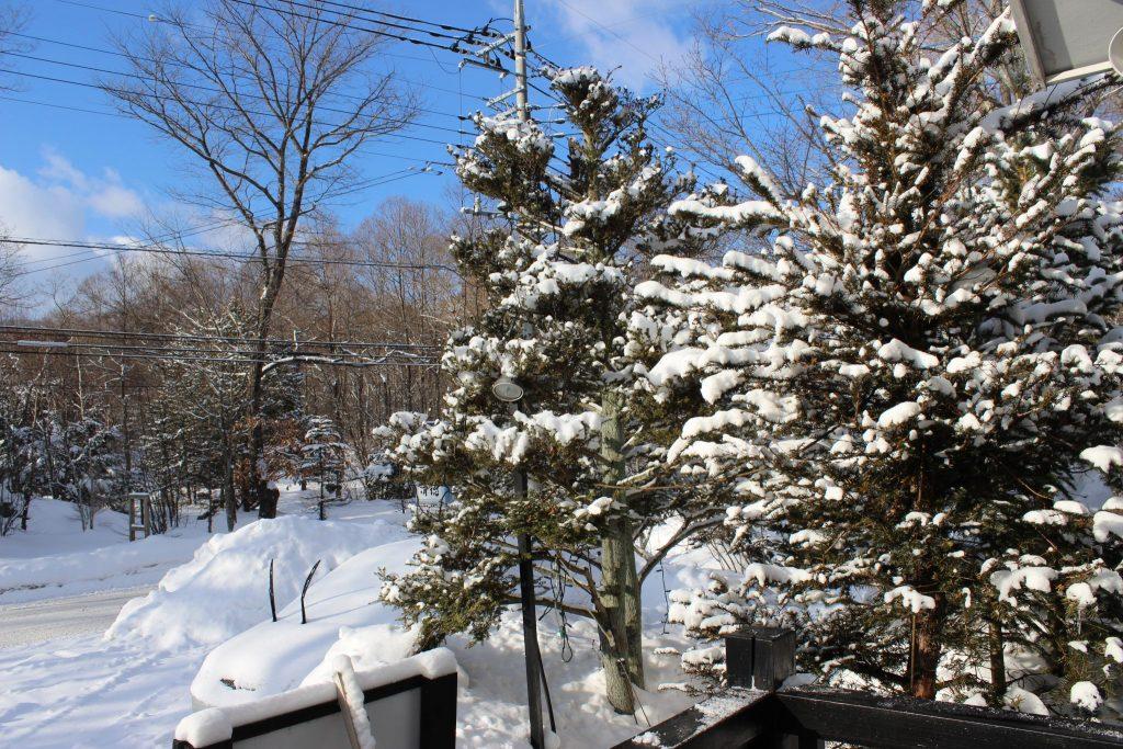 ルネス軽井沢の晴れた冬の日