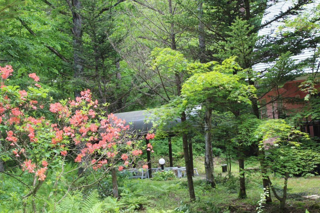 ロイヤルタイプコテージ「エクセル」の庭