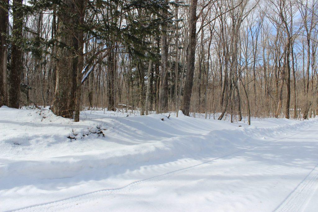 雪の浅間高原
