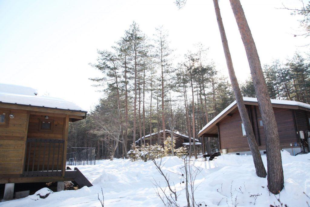 冬のマイトン3棟
