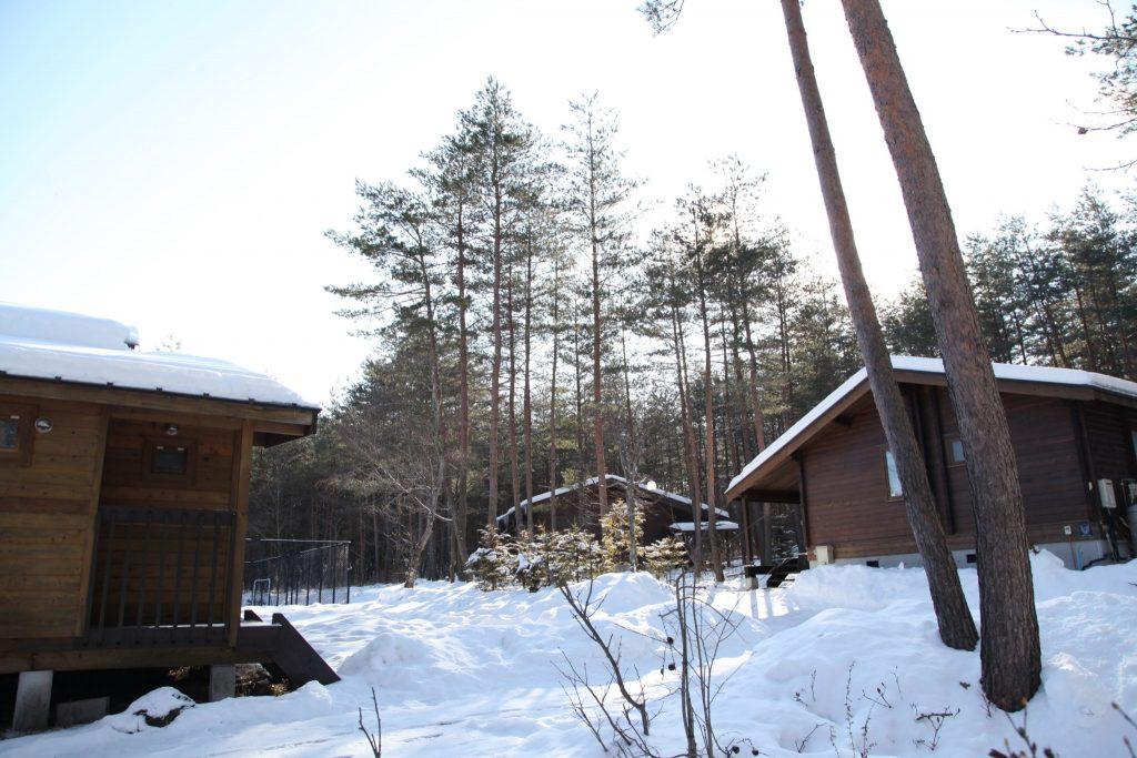 雪のマイトンエリア