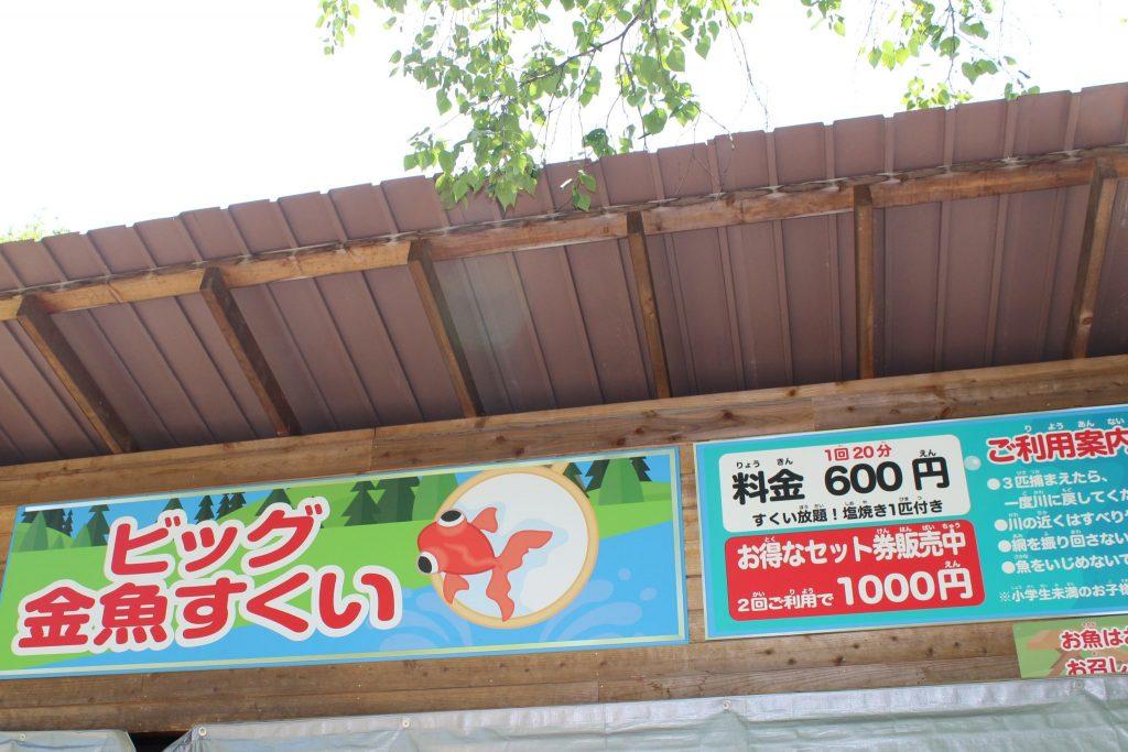 軽井沢おもちゃ王国のビッグ金魚すくい