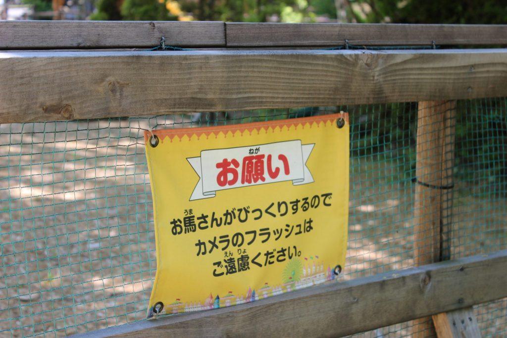 軽井沢おもちゃ王国のアスレチックエリア「どうぶつ広場」ポニー乗り場