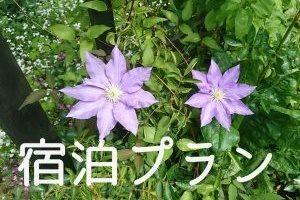 ルネス軽井沢の宿泊プラン