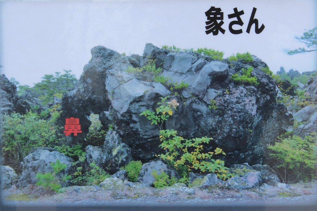 鬼押し出し園 おもしろ岩 象さん