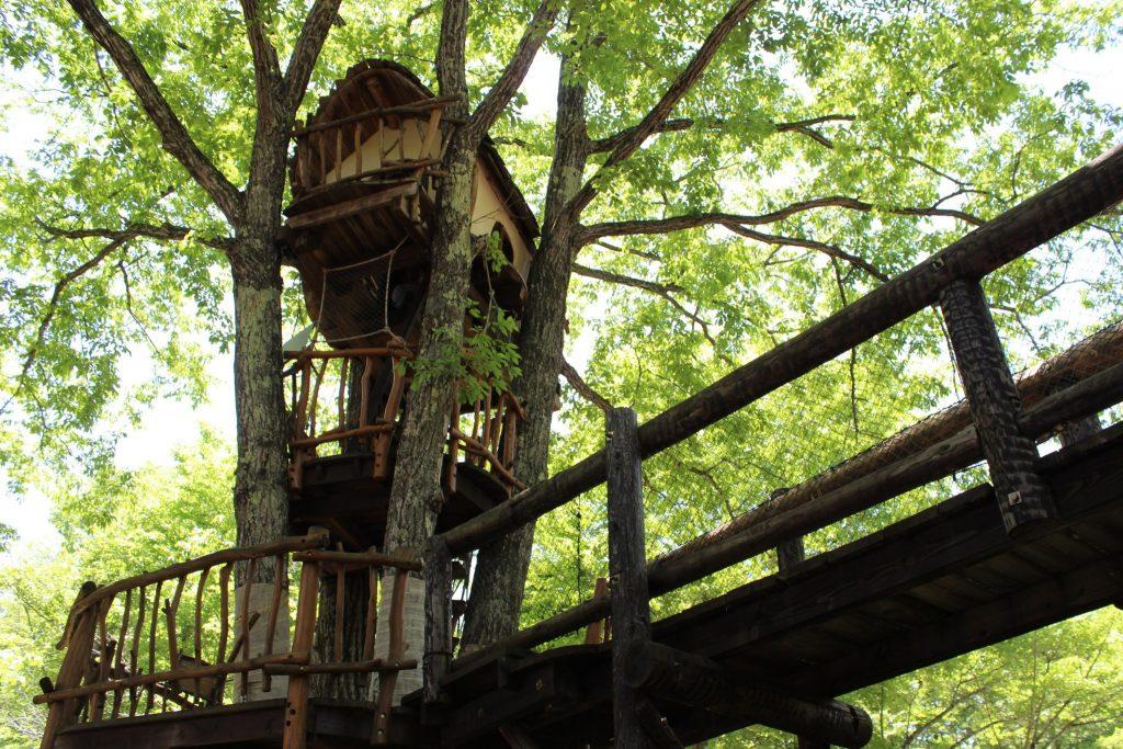 軽井沢おもちゃ王国のわくわく大冒険の森にあるツリーハウス