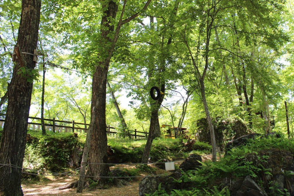 軽井沢おもちゃ王国のわくわく大冒険の森にあるジップロープ