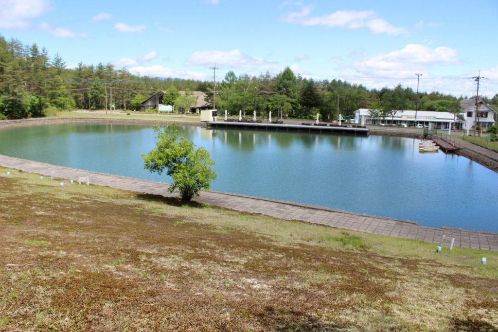 浅間ハイランドパークの池