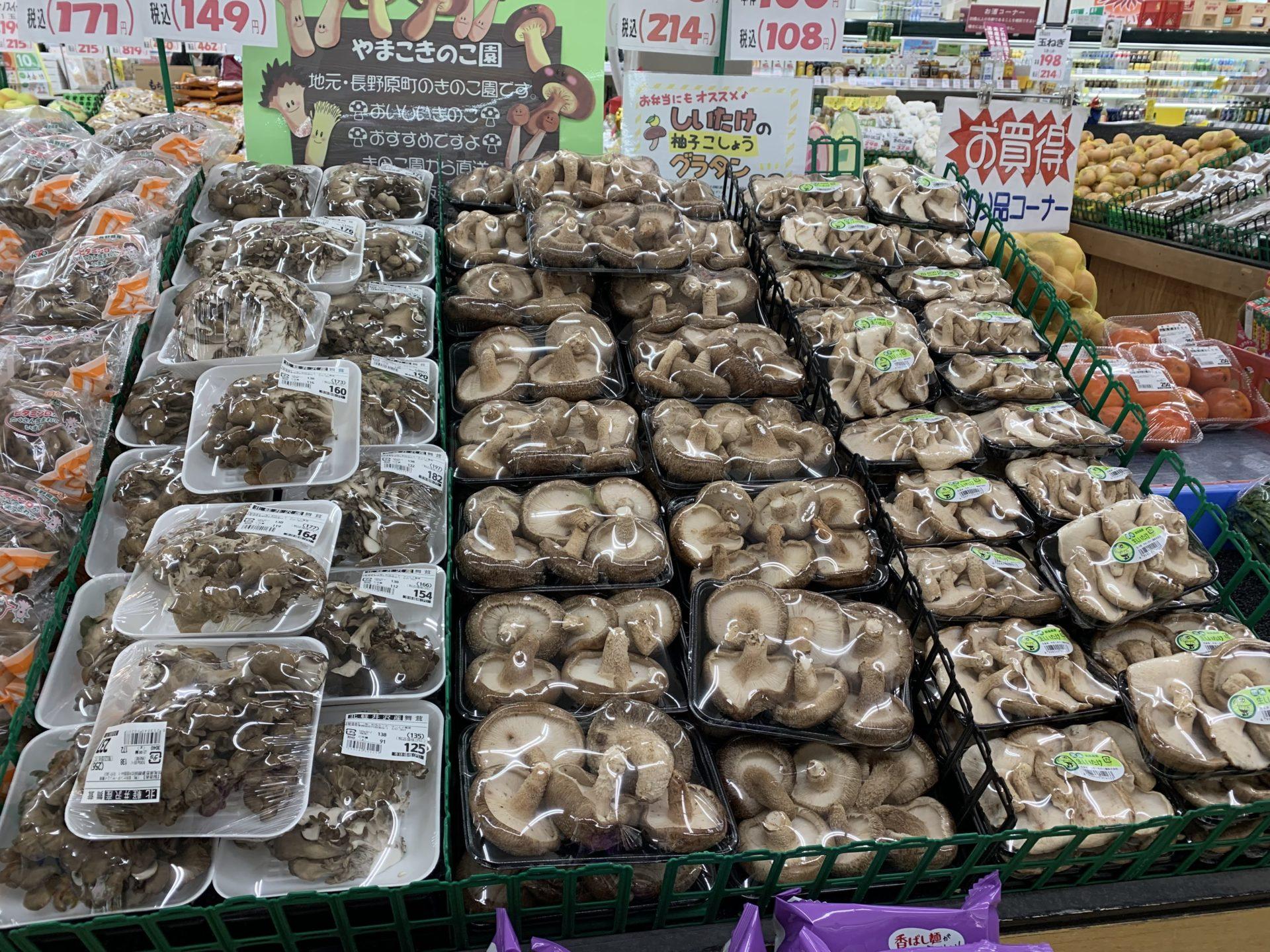 卸売センター「サンエイ」店内のキノコ類、大型の生シイタケ